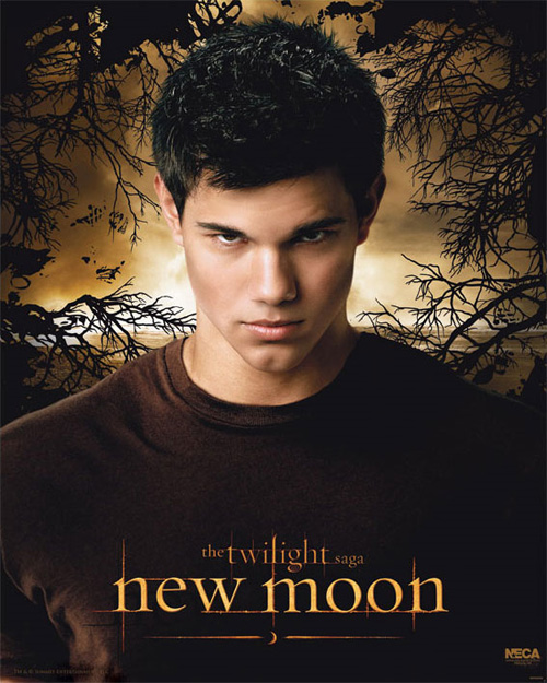 New Moon Movie Poster Official