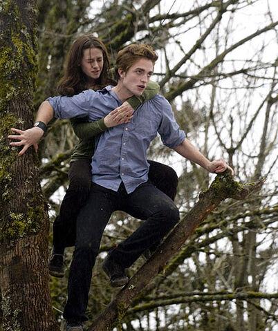 File:Twilight (film) 56.jpg