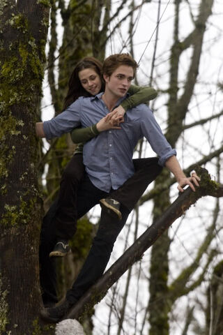 File:Twilight-462-large.jpg