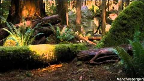Breaking Dawn; Part Two - Bella's First Hunt