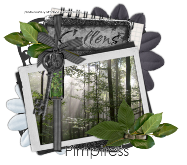 File:Cullens-Pimptress-candyass.png