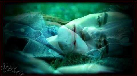 Twilight ~ Edward & Bella ~ The Lion Fell In Love With The Lamb