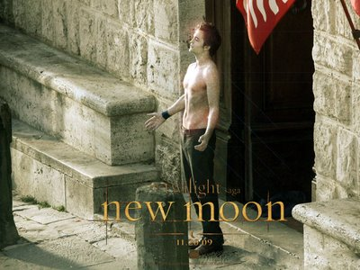 File:Edward-New Moon-sparkle.jpg