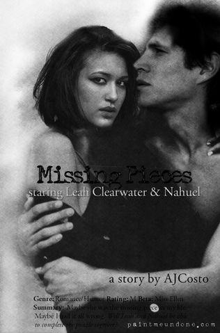 File:Missing Pieces Banner Movie.png
