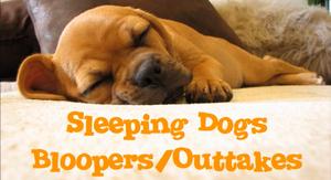 Sleepingdogsbloopers