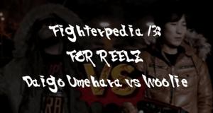 Fighterpedia 13