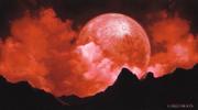 Crimson Moon Brunestud