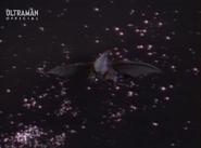 Kilazee Flight
