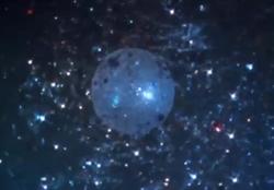 Planet L77