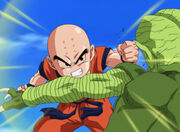 Krillin against a saibaman
