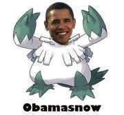 Obamasnow