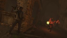 Co-op Shade Survival (Desert Drake Taking Cover From Fire Spirits)