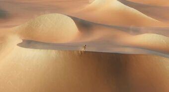 Nate in the desert