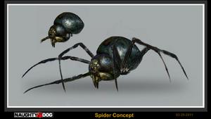 Spider concept