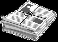 1326368749 newspaper