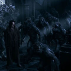 Marius and his Lycan army