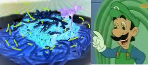 Maman Luigi's magicPasta