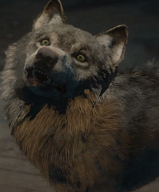 wolfie until dawn wiki fandom powered by wikia