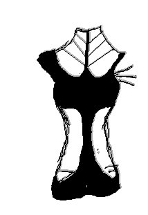 File:Outfit Design 1.jpg