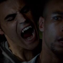 Stefan bites Jesse