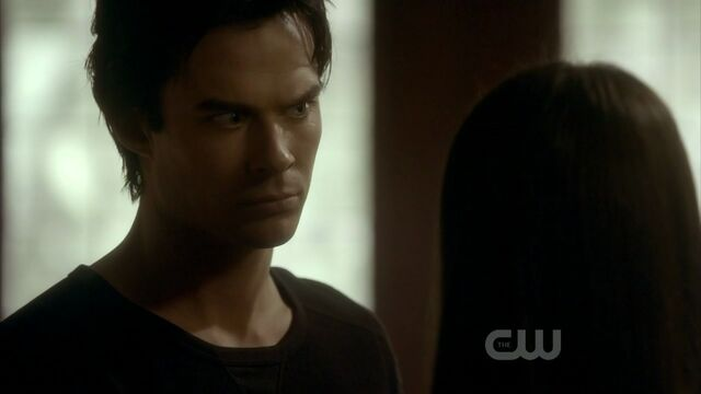 File:2x20-The-Last-Day-damon-and-elena-21541548-1280-720.jpg