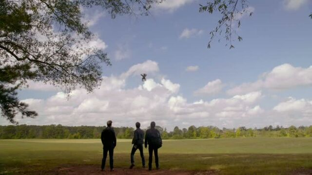 File:6X08-33-StefanDamonAlaric.jpg