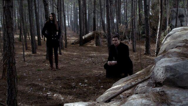 File:Elijah-and-Elena-3x15-elijah-and-elena-29159611-1280-720.jpg