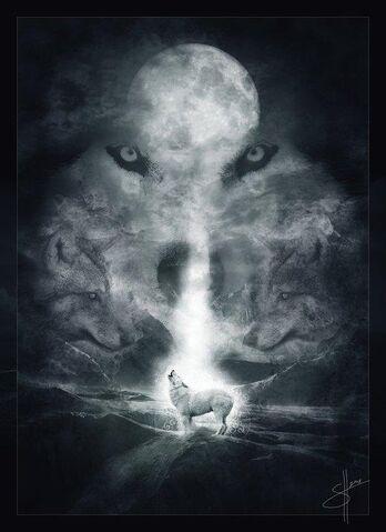 File:Wolf klaus.jpg
