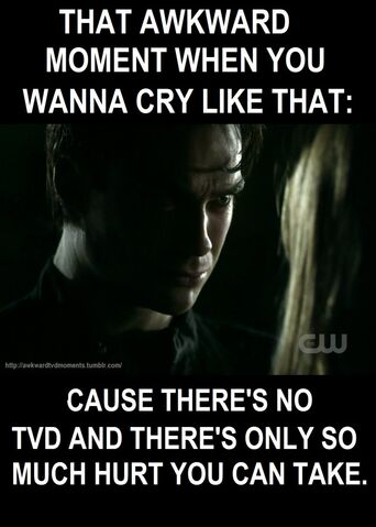 File:Funny-TVD-Pics-the-vampire-diaries-tv-show-29606531-914-1280.jpg
