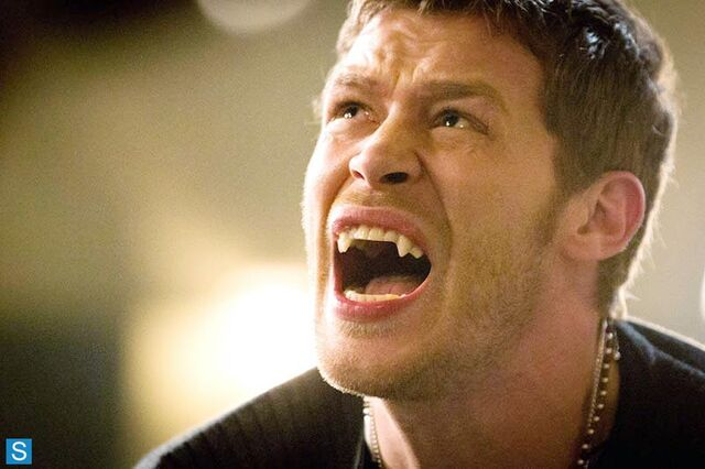 File:The Originals - Episode 1.10 - The Casket Girls - Promotional Photos (6) FULL.jpg