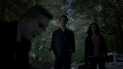 801-045-Stefan-Bonnie