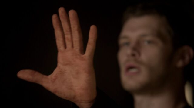 File:Normal TheOriginals210-0667Klaus.jpeg