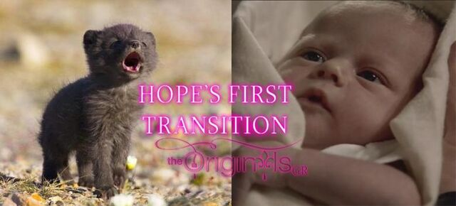 File:The Originals - Hope's First Transition.jpg