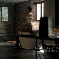 Damon in his bathroom (3x01)