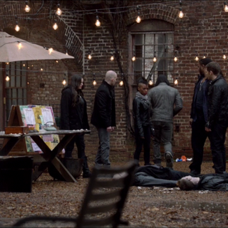 The cauldron the vampire diaries wiki fandom powered for Jardin gris voodoo