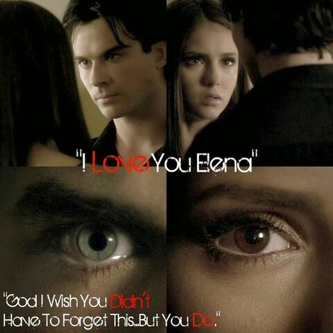 File:Delena208 i wish you didn't have to forget.jpg