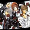 Vampire Knight - Manga 4.5
