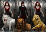 The Lion Set
