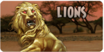 Golden Lion promobox