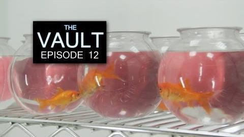 The Vault - Episode 12