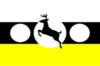 PA Flag Proposal RNYAK