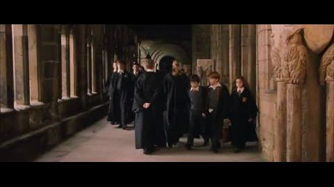 Harry Potter and the Sorcerer's Stone - Making the decision