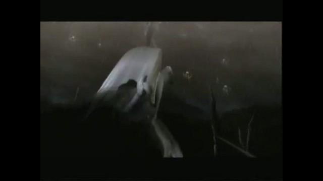Bayonetta Xbox 360 Guide-Walkthrough - Walkthrough Prologue (Part 2 of 4)