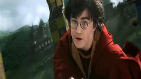 Harry Potter and the Chamber of Secrets - The Rogue Bludger