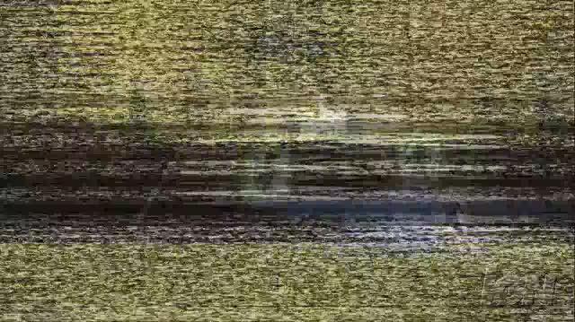Thumbnail for version as of 17:32, September 13, 2012
