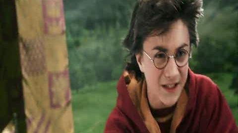 Harry Potter and the Chamber of Secrets - First Quidditch Match