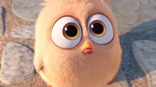 The Angry Birds Movie (Slovenian Trailer 11)