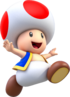 Toad 3DW-esque