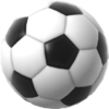 Fig 20 soccerball