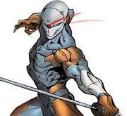 Cyborg Ninja 2.jpg